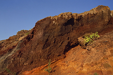 Close-up of rock, ochre earth and prickly pear cactus, Santorini (Thira), Cyclades Islands, Greek Islands, Greece, Europe