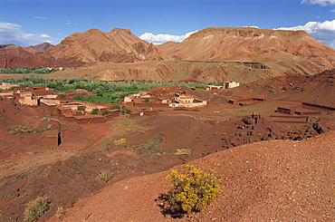 Oasis in arid landscape, Dades Valley, Morocco, North Africa, Africa