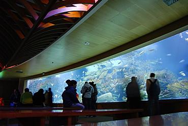 Oceanografic aquarium, City of Arts and Sciences, Valencia, Spain, Europe