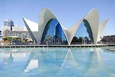Sumarino restaurant, Oceanografic, City of Arts and Sciences, Valencia, Spain, Europe