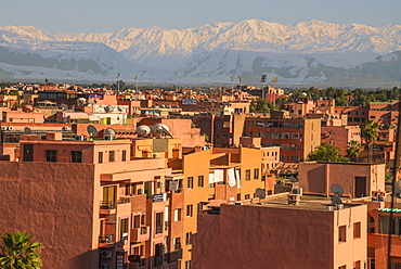 Marrakech panorama, with Atlas Mountains in the backgroud, Marrakesh, Morocco, North Africa, Africa