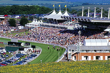 Horses racing and crowds, Goodwood Racecourse, West Sussex, England, United Kingdom, Europe