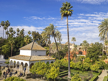 The Gardens of the Royal Palace, Seville, Andalucia, Spain, Europe