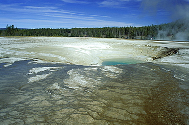 Midway Geyser Basin, Yellowstone National Park, UNESCO World Heritage Site, Wyoming, United States of America (U.S.A.), North America