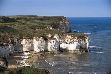 Flamborough Head, East Yorkshire, Yorkshire, England, United Kingdom, Europe