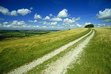 Landscape near Win Green, Shaftesbury, Wiltshire, England, United Kingdom, Europe