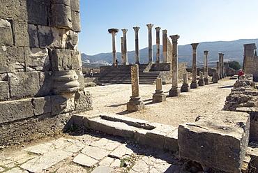 Forum, Roman site of Volubilis, UNESCO World Heritage Site, Morocco, North Africa, Africa