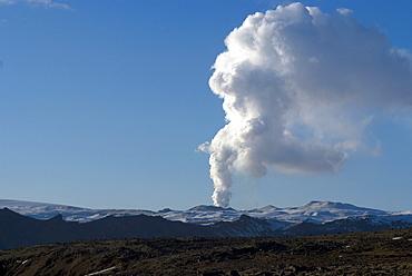 Smoke plume rising over glacier, Eyjafjallajokull volcano, Iceland, Polar Regions