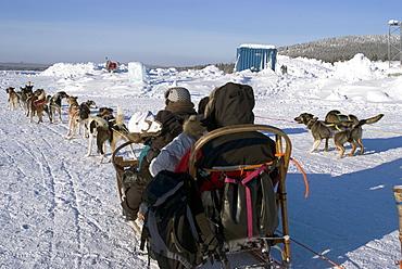 Dog sledding, Jukkasjarvi, Sweden, Scandinavia, Europe