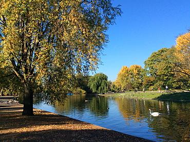 Regent's Park in the autumn, London, England, United Kingdom, Europe