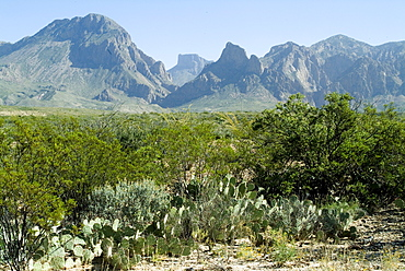 Big Bend National Park, Texas, United States of America, North America
