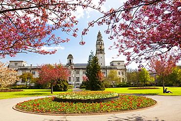 City Hall, Alexandra Gardens, Cathays Park, Cardiff, Wales, United Kingdom, Europe