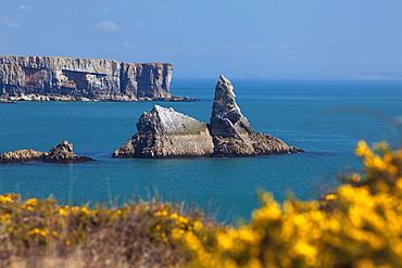 Church Rock, Broad Haven Beach, Pembrokeshire, West Wales, Wales, United Kingdom, Europe
