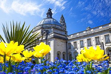 City Hall, Cardiff, Wales, United Kingdom, Europe