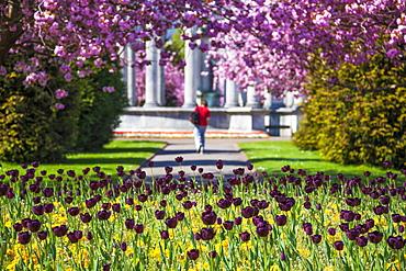Alexandra Gardens, Cardiff, Wales, United Kingdom, Europe