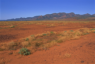 Flinders Range, Heysen Range, South Australia, Australia, Pacific