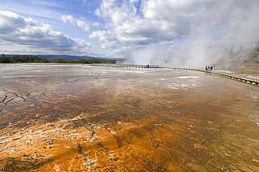 Tourists on boardwalk over the mineral runoff from Grand Prismatic Spring, Midway Geyser Basin, Yellowstone National Park, UNESCO World Heritage Site, Wyoming, United States of America, North America