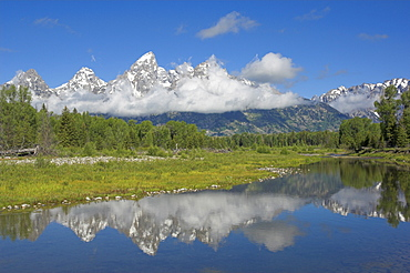 The Cathedral Group of Mount Teewinot, Mount Owen and Grand Teton from the Snake River at Schwabacher's Landing, Grand Teton National Park, Wyoming, United States of America, North America