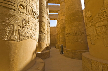 Hieroglyphics on great columns in the Temple of Karnak near Luxor, Thebes, UNESCO World Heritage Site, Egypt, North Africa, Africa