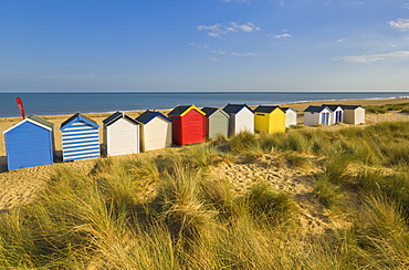 Brightly painted beach huts, rear view, in the afternoon sunshine below Gun Hill, Southwold, Suffolk, England, United Kingdom, Europe