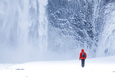 One person in red jacket walking in the snow towards Skogafoss waterfall in winter, Skogar, South Iceland, Iceland, Polar Regions