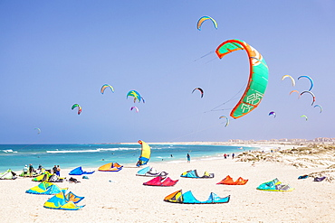Kite surfers and kite surfing on Kite beach, Praia da Fragata, Costa da Fragata, Santa Maria, Sal Island, Cape Verde, Atlantic, Africa