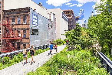 Lower Manhattan tourist attraction, The High Line, urban park, an elevated disused rail line, New York City, United States of America, North America