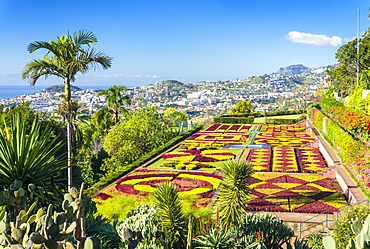 Formal garden in Madeira Botanical gardens (Jardim Botanico), above the capital city of Funchal, Madeira, Portugal, Atlantic, Europe