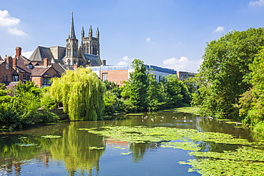 All Saints Church and River Leam, Royal Leamington Spa, Warwickshire, England, United Kingdom, Europe