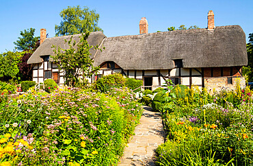 Anne Hathaway's cottage a thatched cottage in a cottage garden Shottery near Stratford upon Avon Warwickshire England UK GB