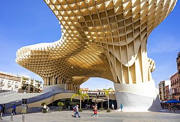 Seville Metropol Parasol (Sevilla Mushrooms) (Las Setas De Sevilla), Plaza de la Encarnacion, Seville, Andalusia, Spain, Europe
