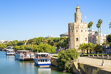 Tour boats moored on the Guadalquivir river bank near the Torre del Oro, Paseo de Cristobal Colon, Seville, Andalusia, Spain, Europe