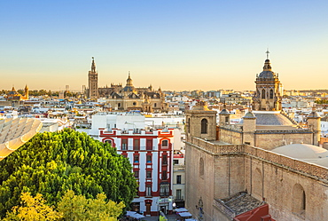 Seville skyline of Cathedral and city rooftops from the Metropol Parasol, Seville, Andalusia, Spain, Europe