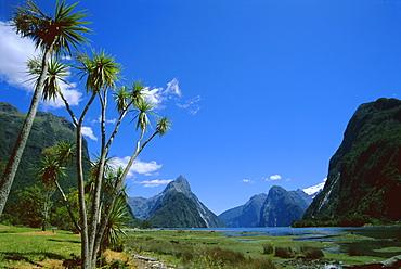 Mitre Peak, Milford Sound, Otago, South Island, New Zealand, Pacific