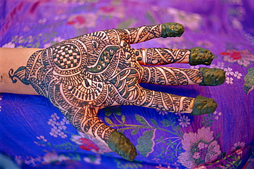 Hand decorated with design in henna, Rajasthan, India