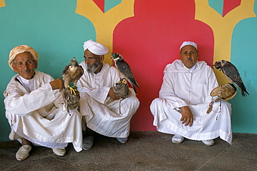 Three falconers with their birds at the Fantasia pour le moussen de Moulay Abdallah, El Jadida, Morocco, North Africa, Africa - 712-1366