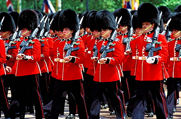 Trooping the colour, London, England, UK, Europe