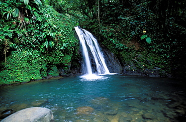 Crevisses waterfall, Basse Terre, Guadeloupe, Caribbean, Central America