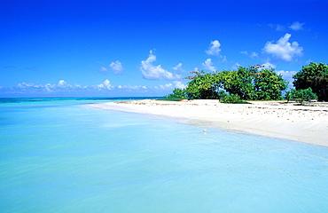 White island, Grand Cul de Sac Marin, Basse Terre, Guadeloupe, Caribbean, Central America