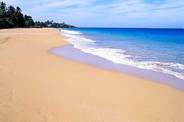 Grande Anse beach, Basse Terre, Guadeloupe, Caribbean, Central America