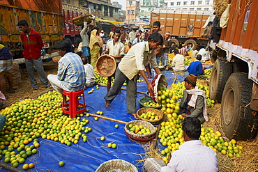 Fruit market, Kolkata (Calcutta), West Bengal, India, Asia