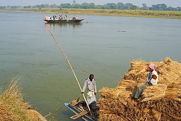 Rice straw transportation on the Hooghly River, part of the Riuver Ganges, West Bengal, India, Asia