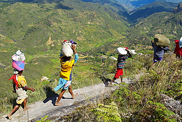 Zafimaniry country people back from market, Madagascar, AFrica