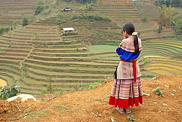 Flower Hmong woman, Can Cau market., Bac Ha area, Vietnam, Indochina, Southeast Asia, Asia