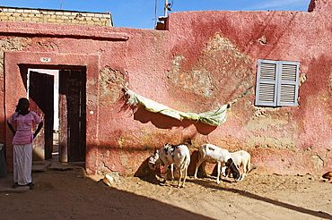 City of Saint Louis, UNESCO World Heritage Site, Senegal, West Africa, Africa