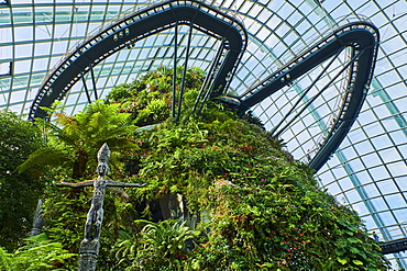 Garden By the Bay, Cloud Forest, botanic garden, the highest artificial waterfall in the world, Marina Bay, Singapore, Southeast Asia, Asia