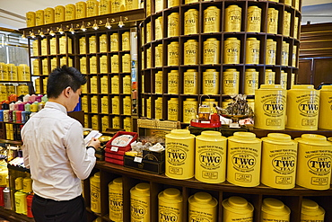 TWG Tea shop, ION Orchard, centre commercial, Orchard Road, Singapore, Southeast Asia, Asia
