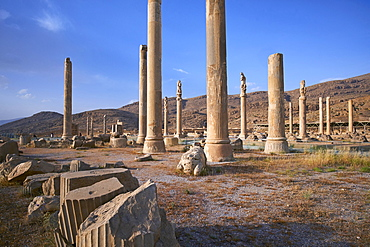 Pillars of the Apadana palace, Persepolis, UNESCO World Heritage Site, Fars Province, Iran, Middle East