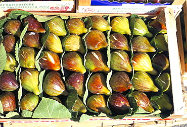 A box of figs for sale in a market, Tuscany, Italy, Europe