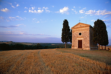 Sienna Province, Chapel and cypress, Tuscany, Italy
